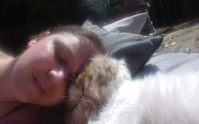 Becky and Nemo's story – a beautiful tale of end of life veterinary care