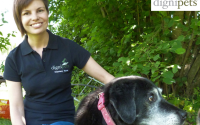 The Hospice Veterinary Nurse; creating awareness